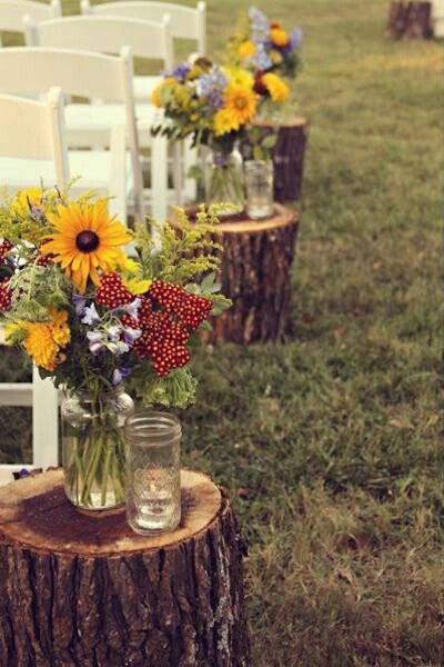 mini jardim curitiba:Tree Stump Wedding Aisle